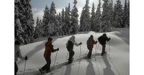 Siemis e steilas mit GM's snowworld