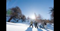 Kulinarische Schneeschuhwanderung im Heidadorf Visperterminen
