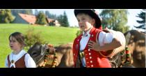 Viehschau in Urnäsch