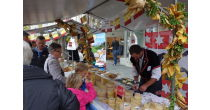 Thun cheese festival