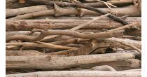 Holzhandwerk im Wandel der Zeit und Eigerness Apéro