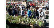Genuss'16 – Entlebucher Kräuter- und Wildpflanzenmarkt