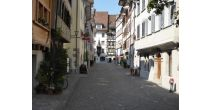 Sightseeing Tour in Zug