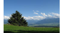 Heilkräuterwochenende in Braunwald