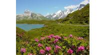 Summer season start on Melchsee-Frutt