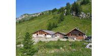 Alpine Cheese Dairy visit.