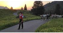 Alpauffahrt auf Sellamatt und Selun