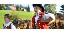 Erlebnis-Viehschau in Heiden (Gemeinden Heiden und Grub)
