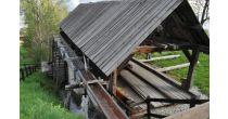 Visite et démonstration de la scierie de Loye