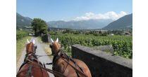 Rössliposcht - Fahrt durch die Ferienregion Heidiland
