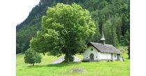 Paysage agricole: de Charmey à la Monse