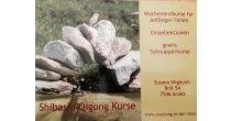 Shibashi Qigong Anfänger/innen-Kurs