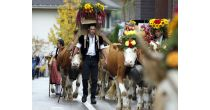 Festa degli alpigiani