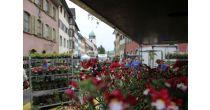 Frühlingsmarkt Bad Zurzach