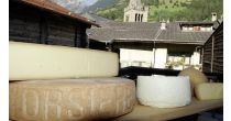 Visit the dairy