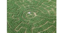 Swiss Labyrinthe