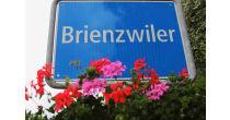 Gemeindeversammlung Brienzwiler