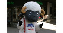 Wolli in the village