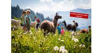 3. Wanderfestival in Brigels