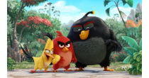 Cinema - Kids - The Angry Birds Movie