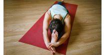 Hatha yoga course