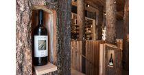 Kleiner Weinkurs - Rebsorte Chasselas