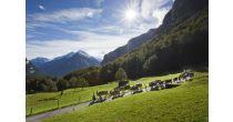 Alpabfahrt und Dorffest Innertkirchen