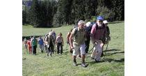 Herbstwanderung mit Alpaka Hofführung und Apéro