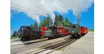 Steam train shuttle: Rigi Staffel-Rigi Kulm