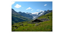 Party and mass of the high mountain pasture of Moiry