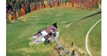Wild und Metzgeten im Bergrestaurant Poo-Alp