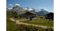 Les Vignerons montent à l'Alpage