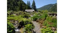 Course annuelle du Jardin Alpin à Pont-de-Nant