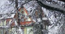 Villa Silvana im Waldhaus Flims