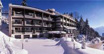 Hotel de la Forêt