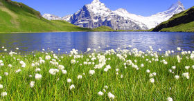 Enjoy Spring in Grindelwald