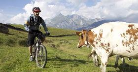 Wildmannli Bike