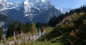 Hut trekking Mürren-Kandersteg (Hintere Gasse)