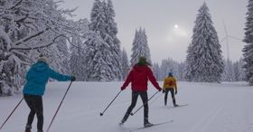 Cross-country ski trekking