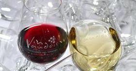 Château d'Aigle: Culture, Vin & Gastronomie