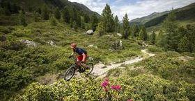 Unique biking experience