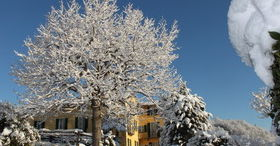 Winter in Carona erleben