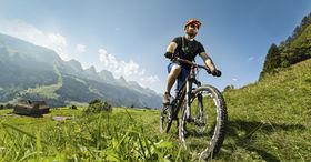 Panorama Bike: Rorschach - Giswil