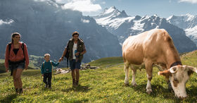 Grindelwald ontdekken