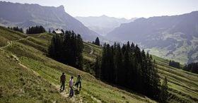 Savourer l'été en montagne