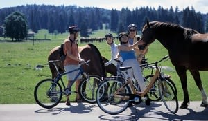 Cyclists with horses in the Freiberge region of the Jura
