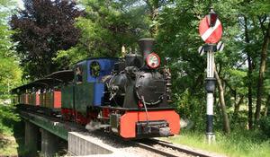 Baumschulbahn Schinznach-Dorf