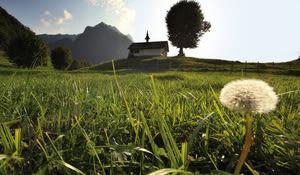 Alp La Monse, Charmey