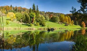 Arboretum Morges Region