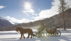Horse-drawn sleigh ride in the Upper Engadine